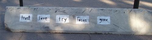 trust love try focus grow / djking